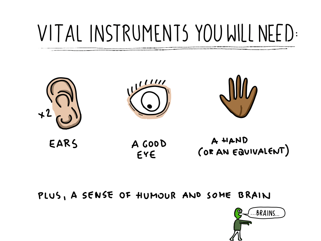 Ears, eyes, hands and brain! All that a UX might need.